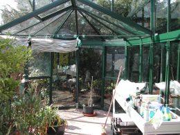 Orangerie15