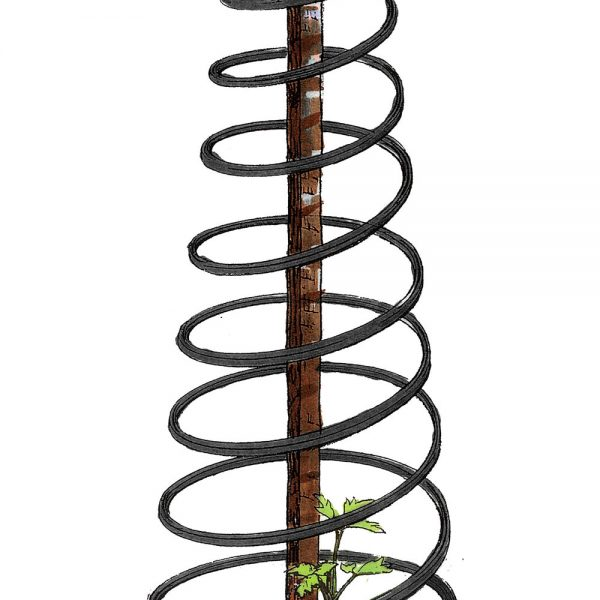 Gewächshaus Zubehör - Rank-o-Twist-1