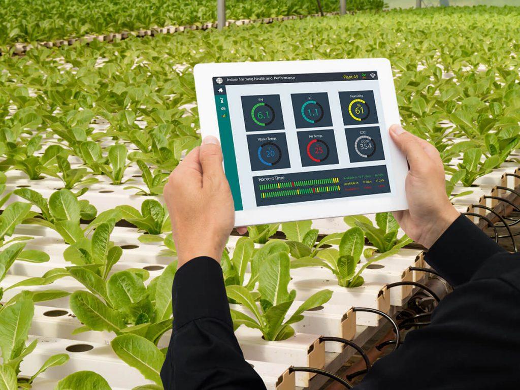 Smart Garden von Bewässerung bis Pflanzerfolg