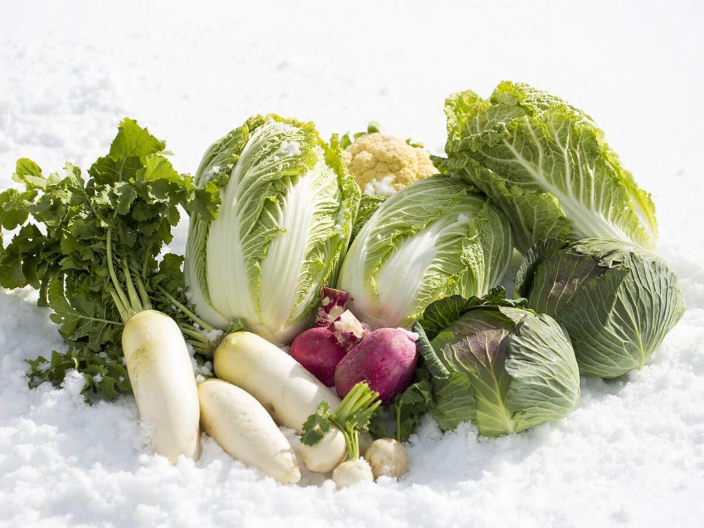 Winter Gemüse