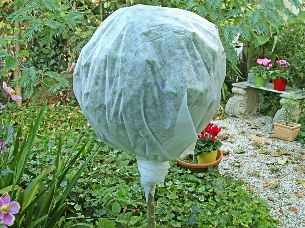 Im Winter einzelne Pflanzen schützen